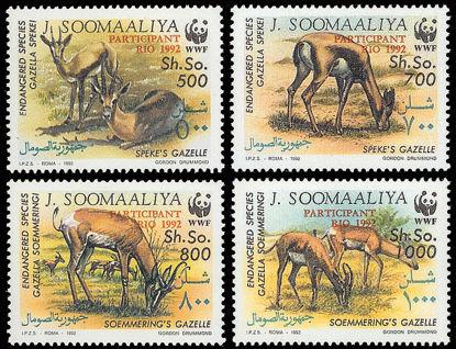 Immagine di 390 - ANIMALI : SOVR. RIO 1992