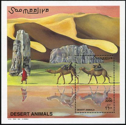 Immagine di 63 - ANIMALI  DEL DESERTO
