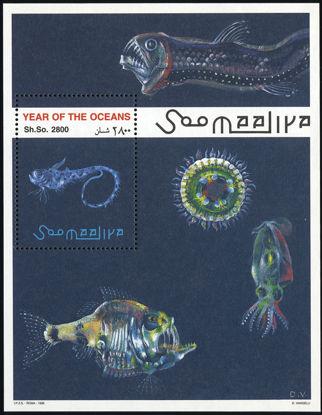 Immagine di 50 - ANNO DEGLI OCEANI