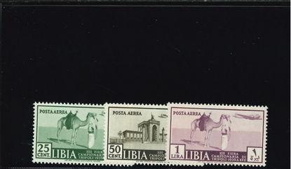 Immagine di 38 - XIII° FIERA