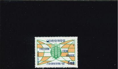 Immagine di 377 - FAO