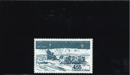 Immagine di 74 - SLITTE TRAINATE DA CANI