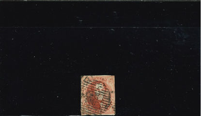 Immagine di 12 - LEOPOLDO I 40 C ROSA