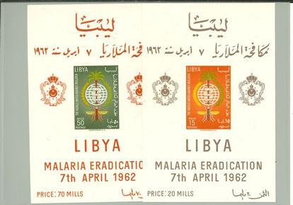 Immagine di 2 - MALARIA