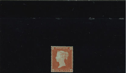 Immagine di 12 - VITTORIA 1 p D16 GRANDE CORONA