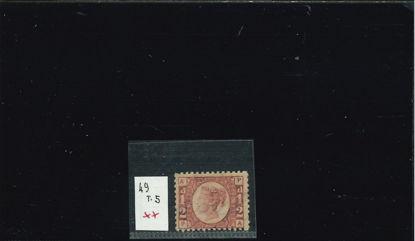 Immagine di 49 - REGINA 1/2 T5
