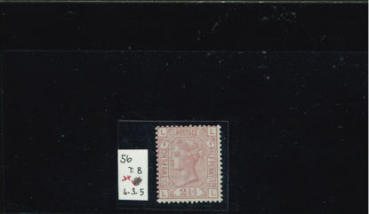 Immagine di 56 - REGINA VITTORIA 2,5 s ROSA C T8
