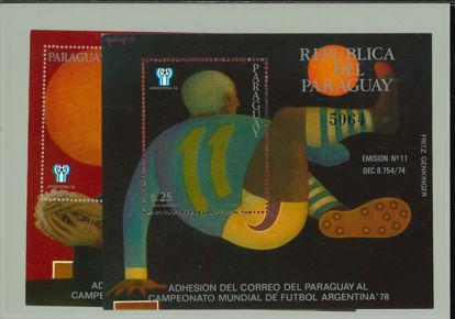 Immagine di 310 - CALCIO ARGENTINA