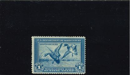 Immagine di 1934 - ANATRE SELVATICHE -AZZURRO-