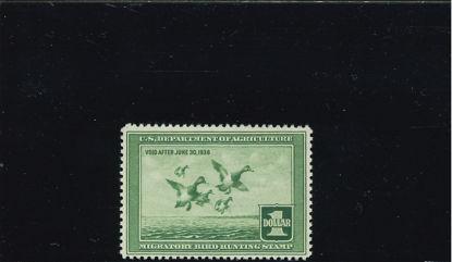 Immagine di 1937 - SCAUP
