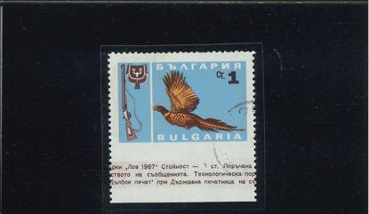 Immagine di 1483 - UCCELLI 1S. ND. IN BASSO (M.1691UU)