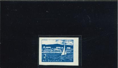 Immagine di 86 - DEF. 2S. ND SENZA COL. ROSA (M.1319U)