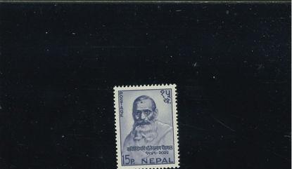 Immagine di 189 - POETA LEKNATH PANDYAL