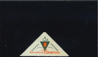 Immagine di 183 - EXPO DI KATMANDOU