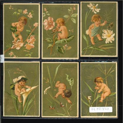 Immagine di 27 - AMORINI 3° (su rami e foglie)-FRANCESE