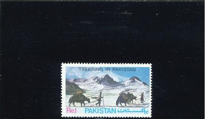 Immagine di 572 - STRADE DEL PAKISTAN