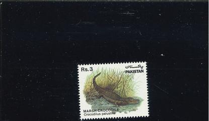 Immagine di 573 - PROTEZIONE DELLA NATURA (IX)